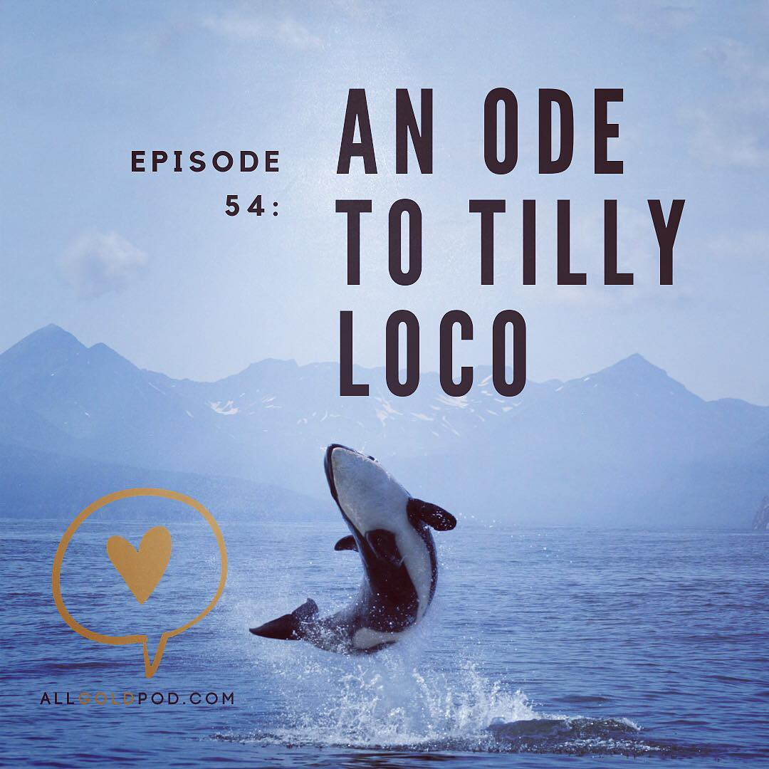 All Gold Everything | Episode 54: An Ode to Tilly Loco
