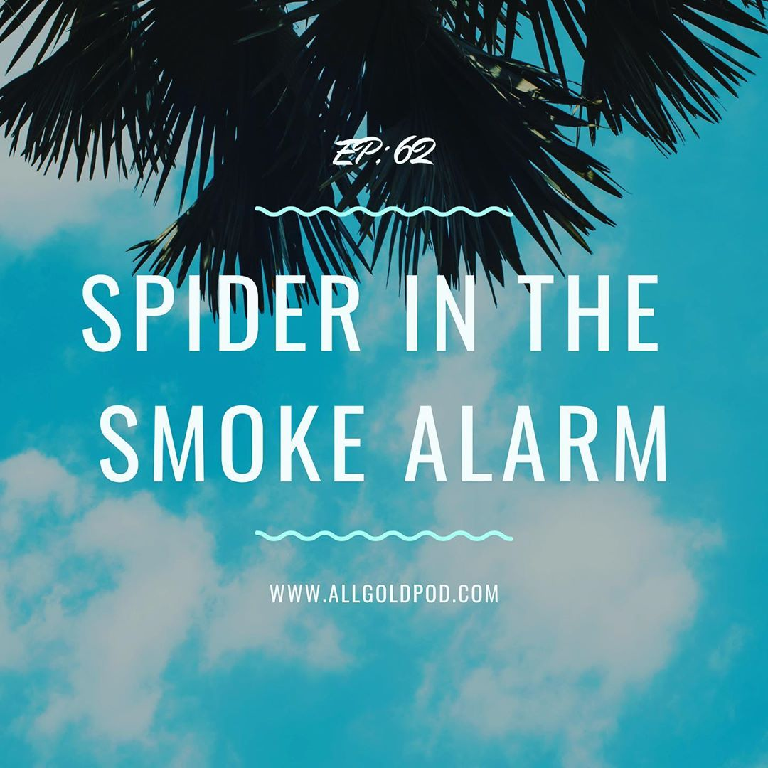 All Gold Everything | Episode 62: Spider in the Smoke Alarm